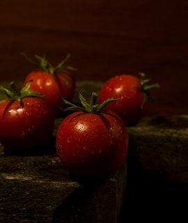 seminte rosii kristin
