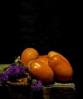 seminte rosii prunisoare-portocalii